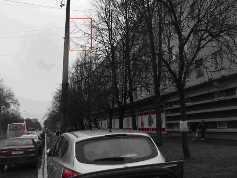 Рекламные площади на столбах уличного освещения в Пушкине.