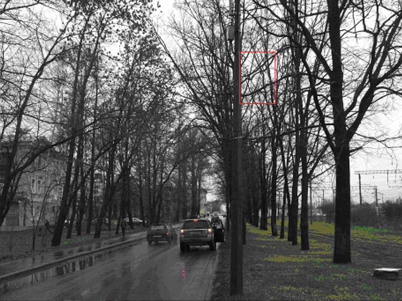 Размещение рекламы на опорах уличного освещения в Ленинградской области.