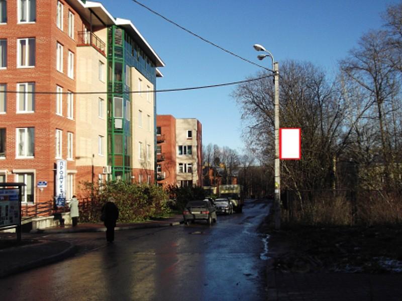 Размещаем рекламу на опорах уличного освещения в Пушкине.