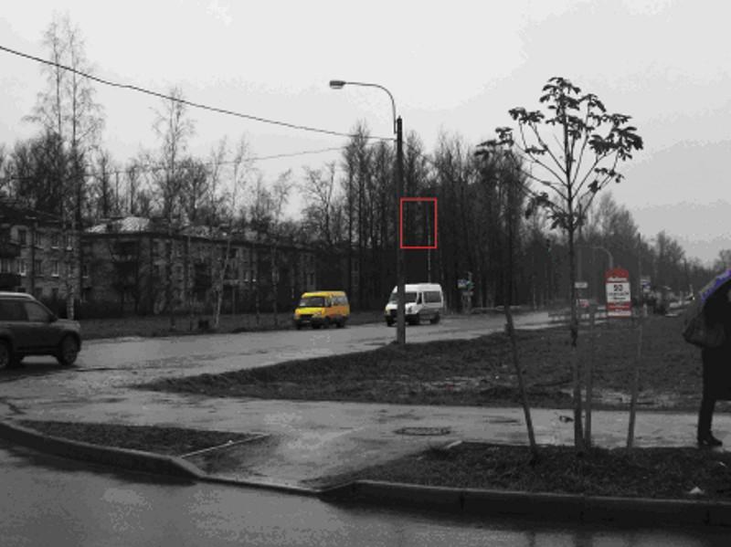 Рекламоноситель на опоре уличного освещения в Пушкине на ул. Галицкая